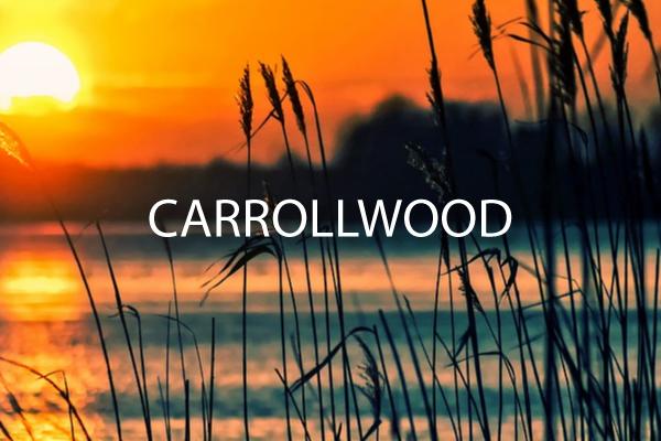 Carol-wood