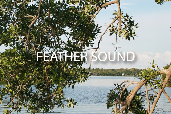 neighborhood guide Feather Sound