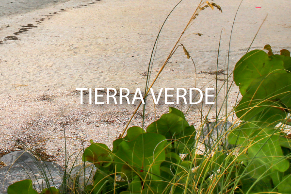 neighborhood guide Tierra Verde